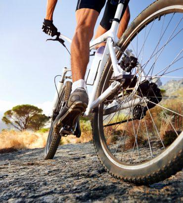 Le vélo, un sport brûleur de calories !